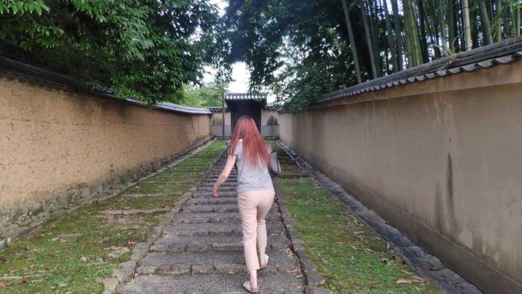 東大寺周辺を散歩