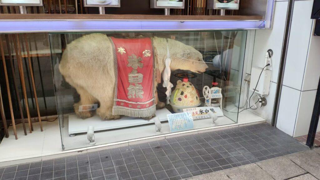 鹿児島むじゃき本店の白熊の剥製