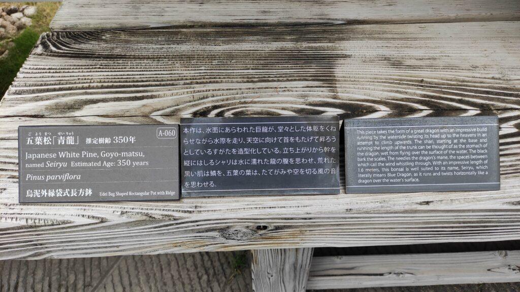 大宮の盆栽園